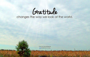 10 Ways Gratitude Can Change Your Life